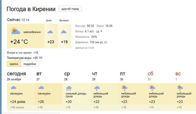 Погода в шкуринской на месяц